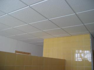 Precio falso techo escayola cool placa de techo t xxmm with precio falso techo escayola finest - Placas de techo desmontable ...