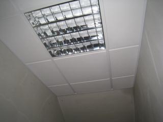 Busqueda en preoc - Precio moldura escayola techo ...